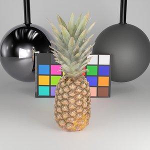 scanned pineapple 3D model