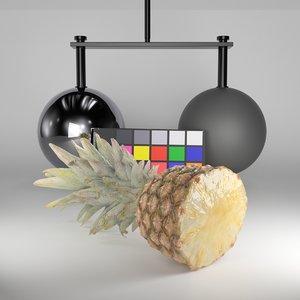 3D scanned half pineapple model
