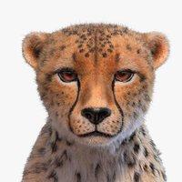 cheetah fur xgen 3D
