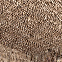 3D model ceiling branch