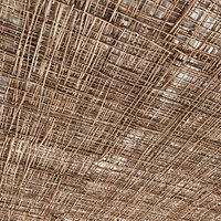 ceiling branch model
