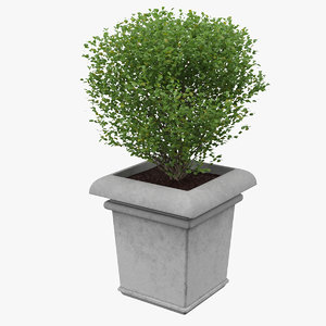 planter real world 3D model