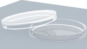 petri dish 3D model