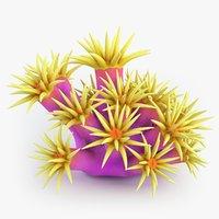 3D tubastrea coral model