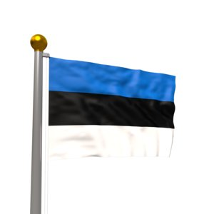 realistic waving flag model