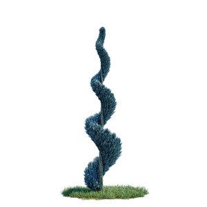cupressus arizonica spiral - 3D model