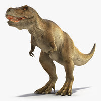 3D tyrannosaurus rex waiting animal model