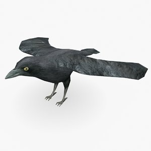 crow type 01 3D model