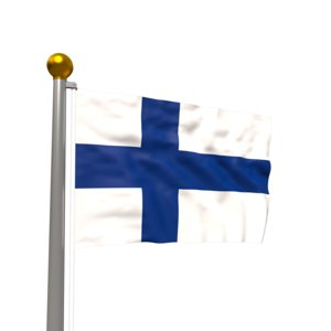 3D model realistic waving flag