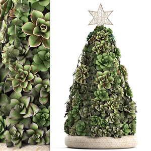 3D new year tree succulents