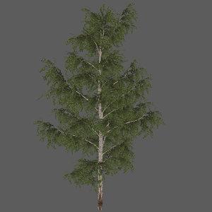 foliage tree 3D model