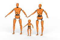 Robot Android family Crash Dummy Test