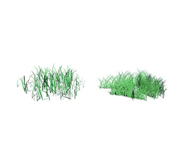 grass types model