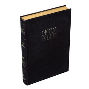 3D bible book model