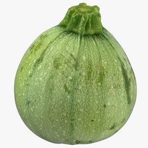 zucchini 05 model