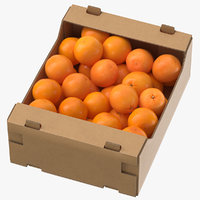 cardboard display box oranges 3D model