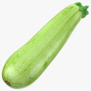 3D model zucchini cousa squash 03
