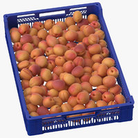 Postharvest Fruits and Veggetables Tray with Apricots