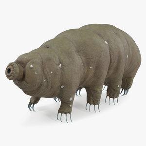 tardigrade rigged model