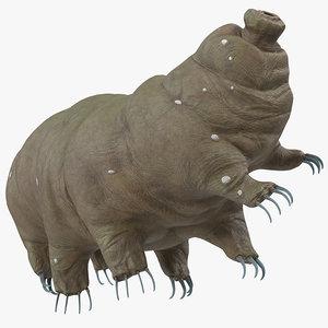 3D tardigrade rigged