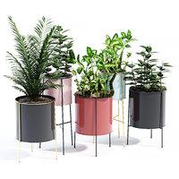 3D inaya plant pot model
