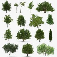 summer trees 4 3D model