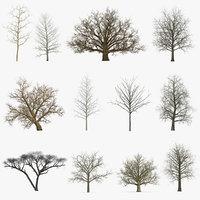 winter trees 3 model