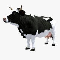 3D dairy cow model