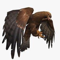 3D eagle animal model