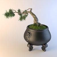 bonsai tree cauldron 3D model