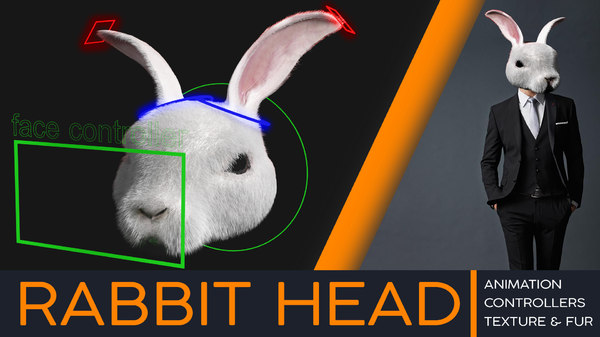 3D rabbit head