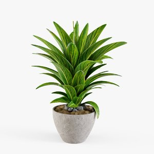 plant design modeled 3D model