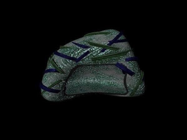centripedes burrow mecha-burrow 3D