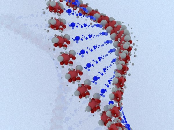 3D dna deoxyribonucleic acid