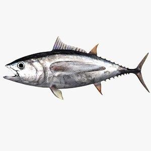 realistic tuna 3D model