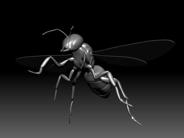 3D bee animal