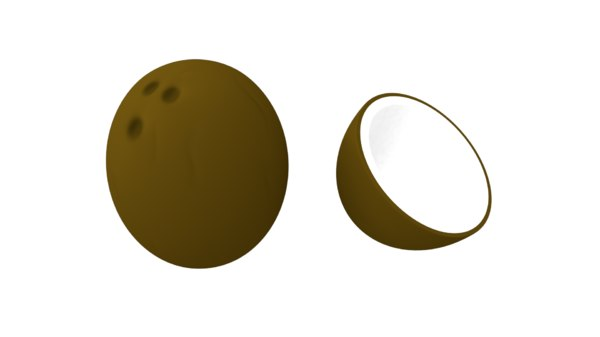 coconut open 3D model