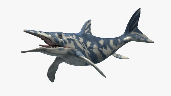 3D ancient ichthyosaurus