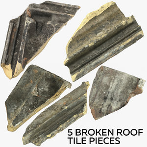 5 broken roof tile 3D model