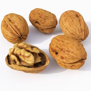 3D nut walnut model