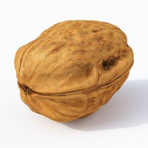 nut walnut 3D