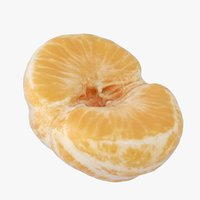 peeled half tangerine model