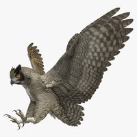 rigged great horned owl 3D