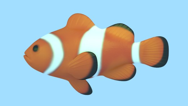3D model fish clownfish