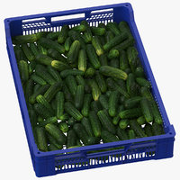 3D postharvest tray kirby cucumbers model