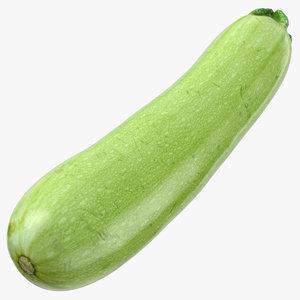 zucchini cousa squash 05 model