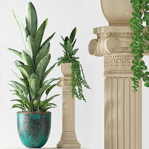 plants 228 indoor 3D