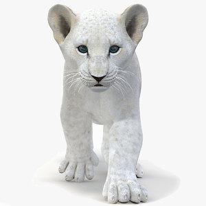 white lion cub modeled 3D model