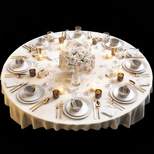 table setting 11 model