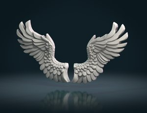 wings measure units 3D model